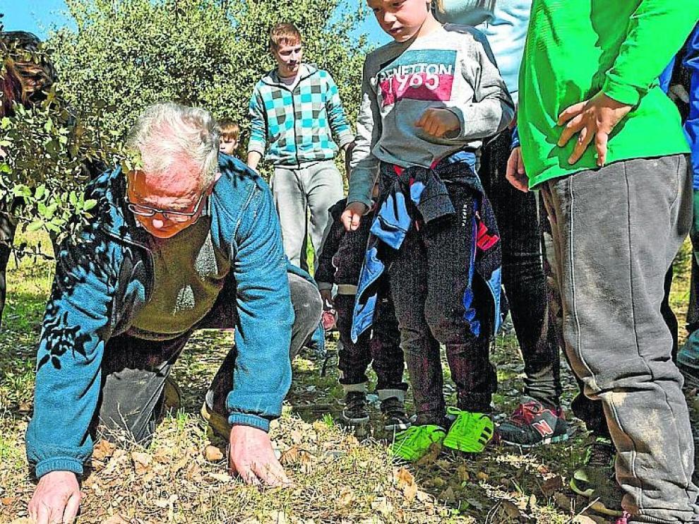 Un apasionado de la trufa enseña a los huéspedes de Casa 'El Francés' a buscar el hongo en una plantación y después a la mesa.