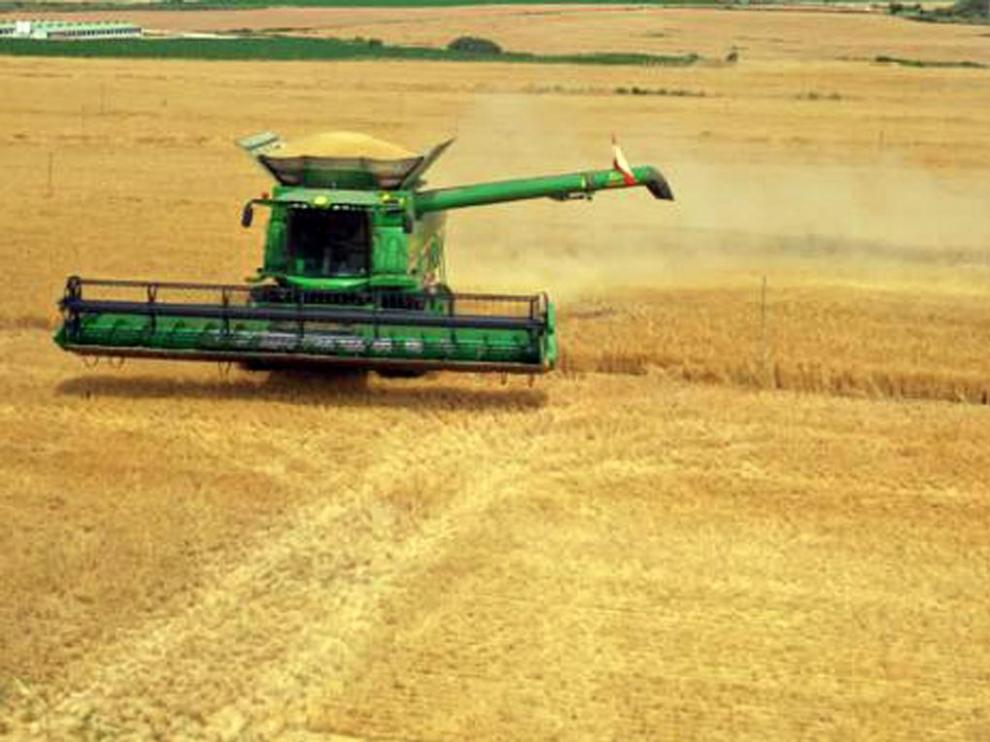 Labores de la cosecha  de cereal este año en la provincia de Huesca.