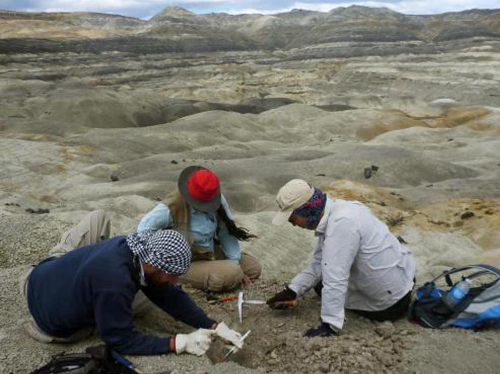 Fueron hallados en la formación geológica de Cerro Fortaleza, ubicada en la provincia sureña de Santa Cruz, Argentina
