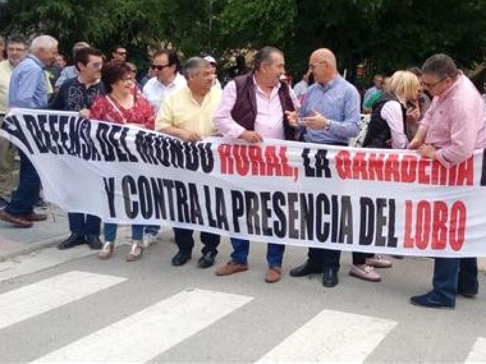 La Plataforma contra el lobo pide a Olona que se marche del Gobierno
