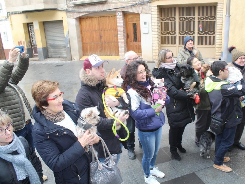 Monzón reedita la festividad de San Antón con la bendición de una veintena de perros