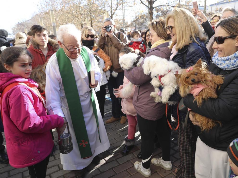 Bendición de San Antón sobre las mascotas de Huesca
