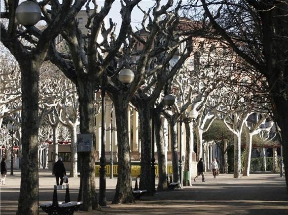 El parque Miguel Servet de Huesca estará cerrado este sábado por precaución