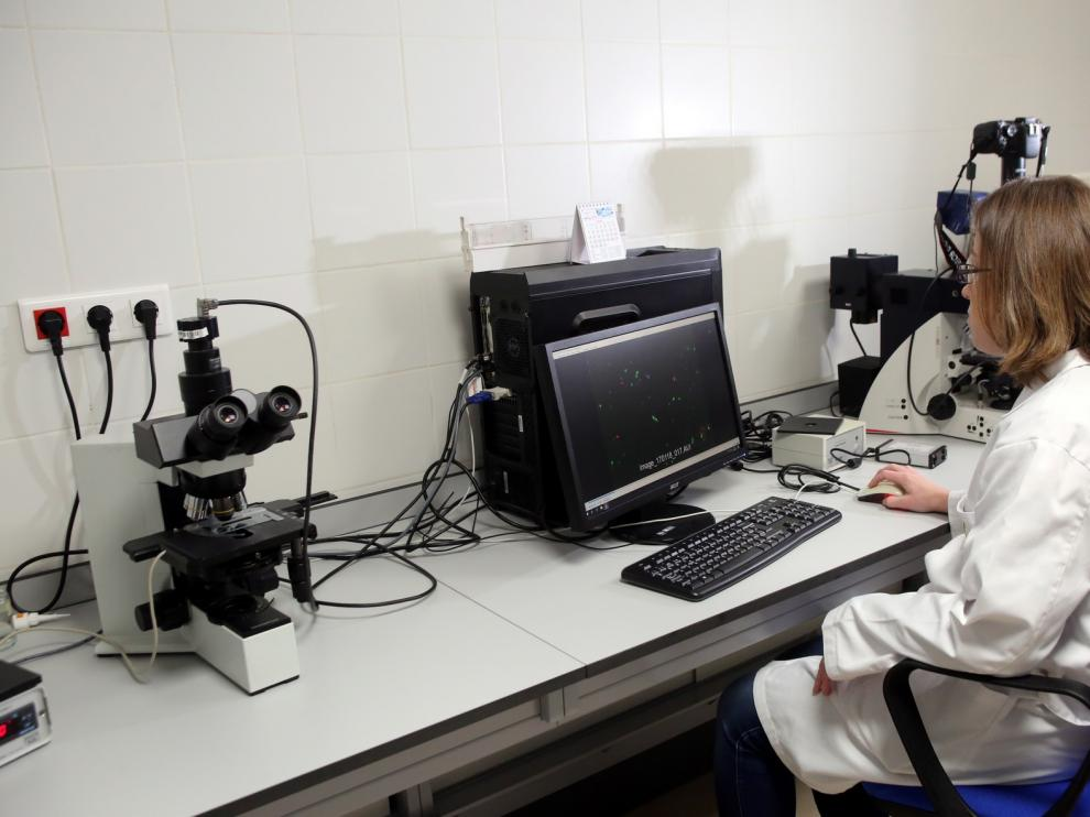 Laboratorios para la excelencia investigadora en la Escuela Politécnica Superior de Huesca