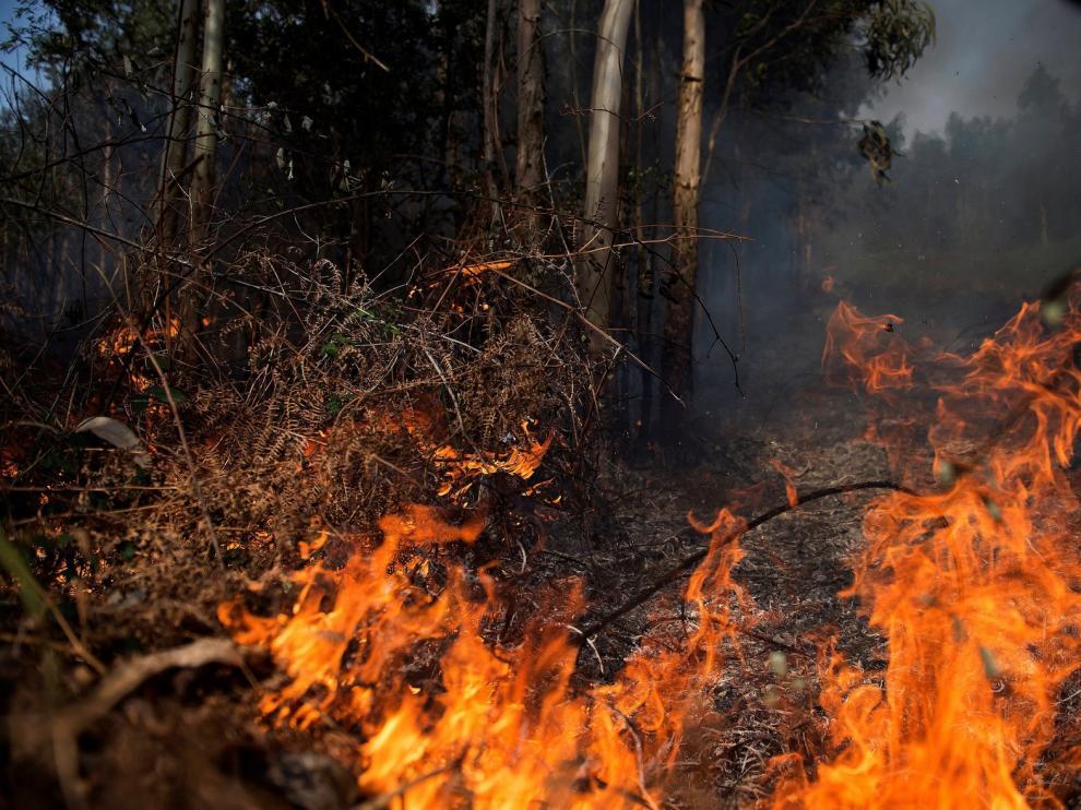 Detenido el jefe de unos voluntarios de Protección Civil por uno de los fuegos de Cantabria