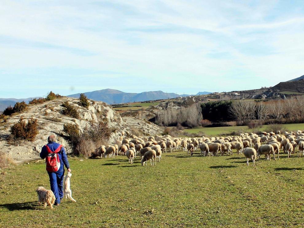 """Bienestar, experiencias """"agro"""" y setas, tres reclamos para visitar la provincia de Huesca"""