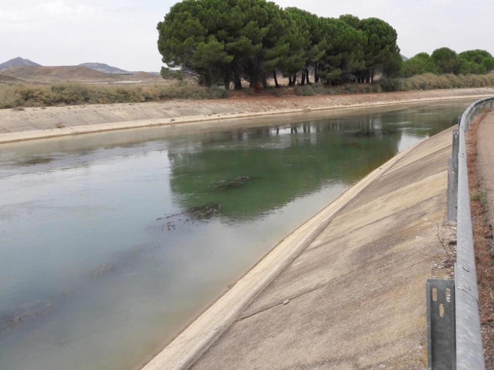 Adjudicados los proyectos de mantenimiento y conservación de los Canales del Cinca y Monegros