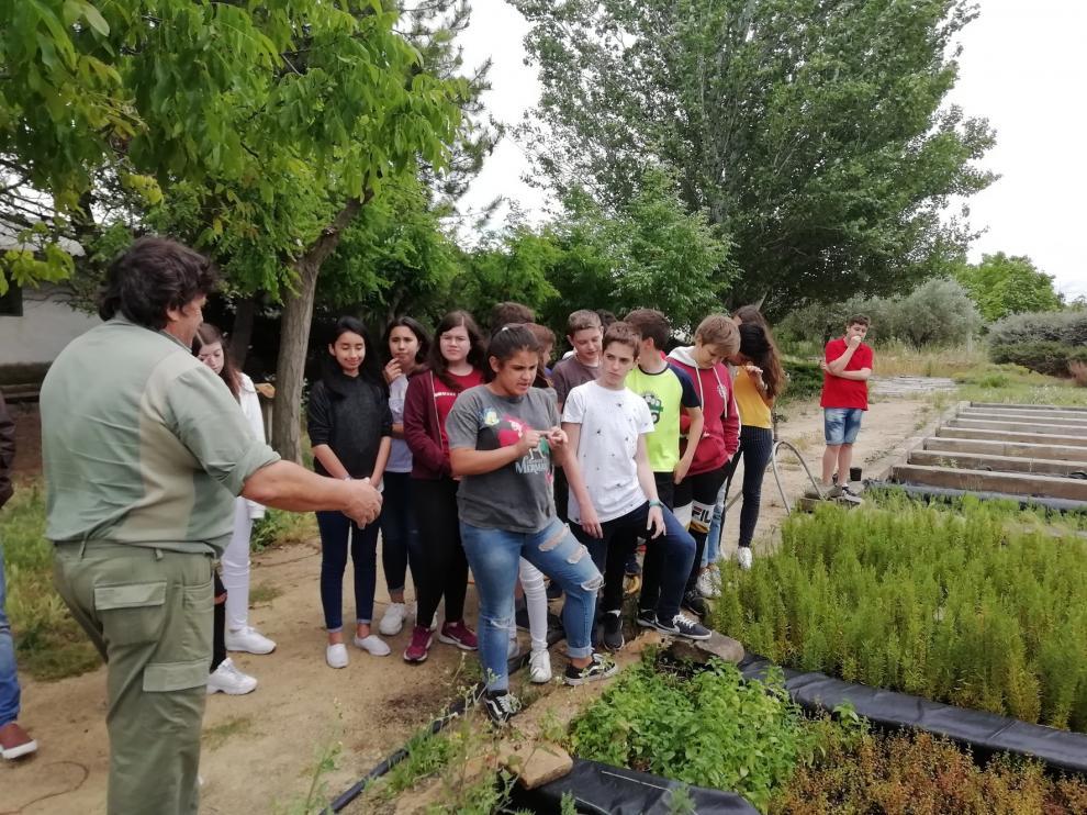 Alumnos del IES Ramón y Cajal visitan el vivero en el día mundial del Medio Ambiente