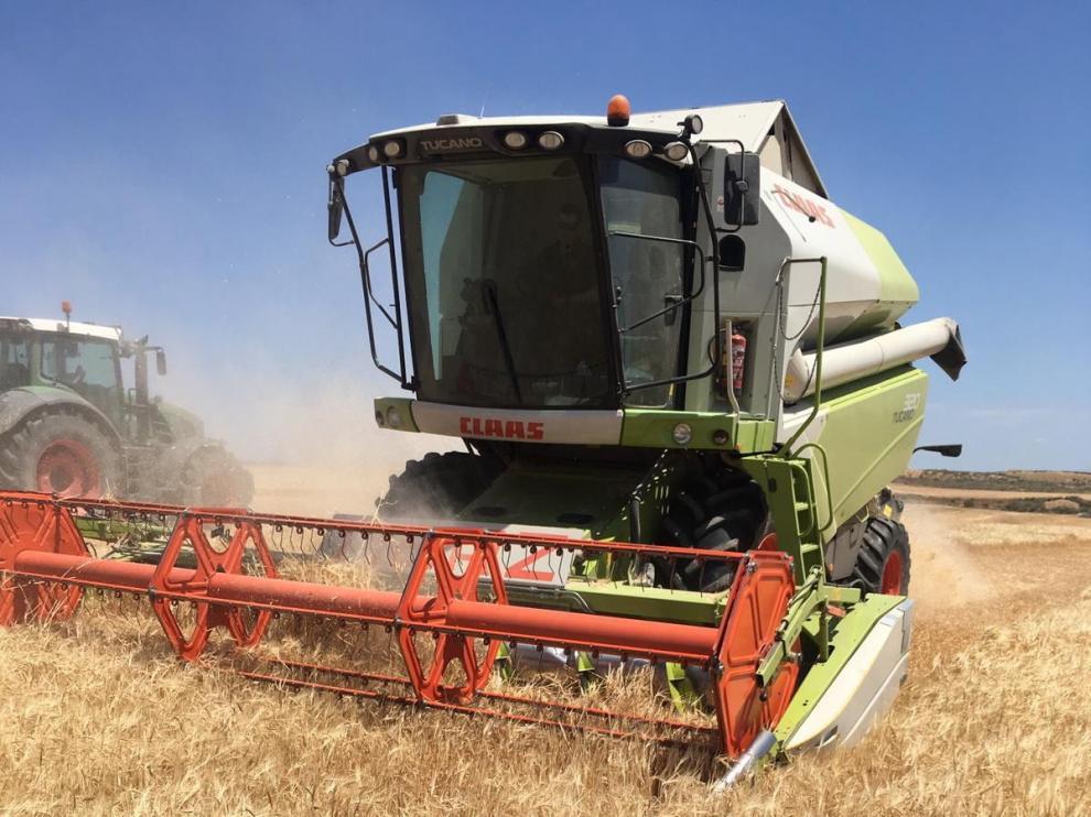 Los sindicatos agrarios prevén que la cosecha de cereal sea en Huesca un 28 % inferior a la del año pasado