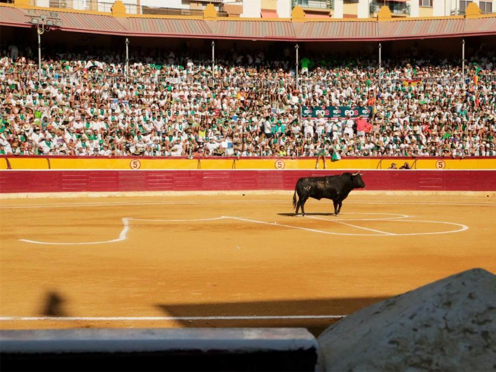 Mano a mano de Castella y Emilio de Justo o Roca Rey, protagonistas en la feria taurina de Huesca