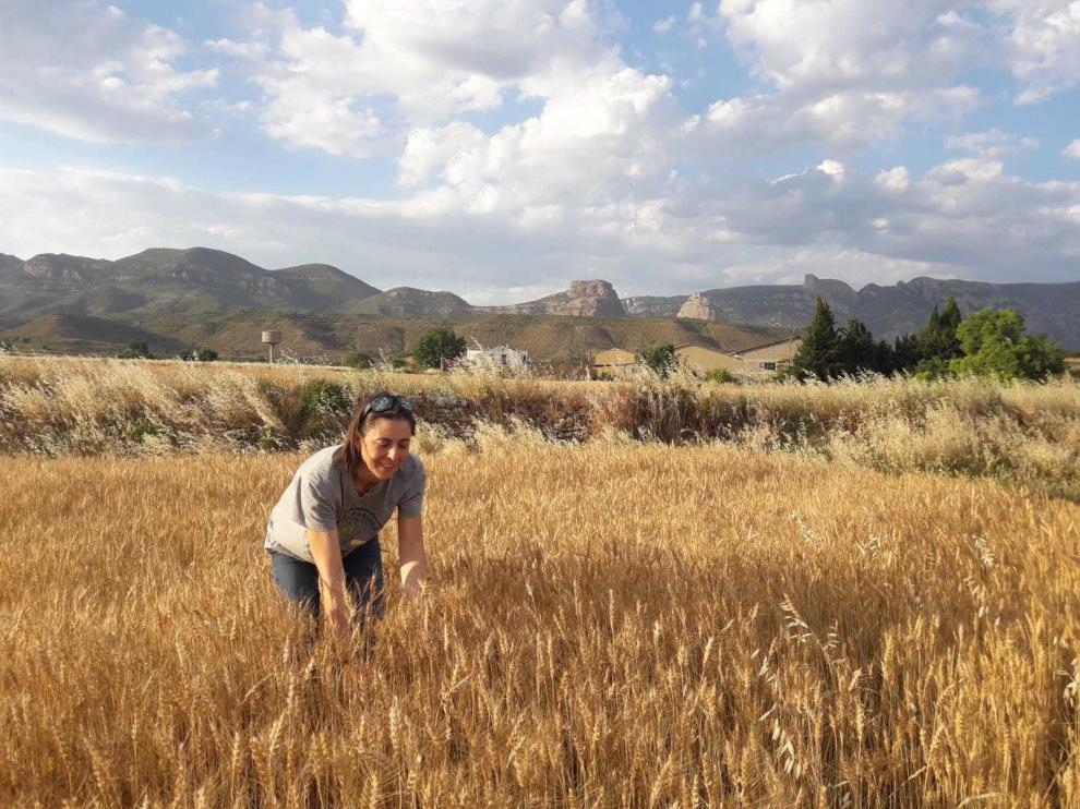 La agricultura ecológica reivindica que se reconozca su peso en el sector