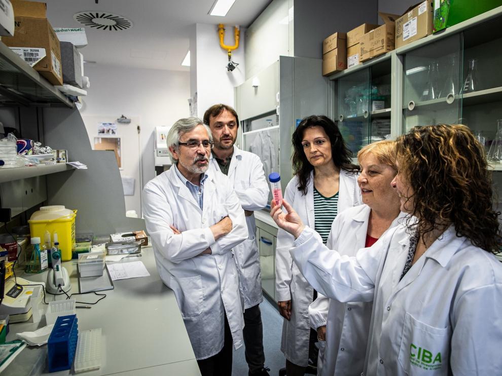 Investigadores aragoneses hallan un método para el diagnóstico de una infección que amenaza la vida de niños con cáncer