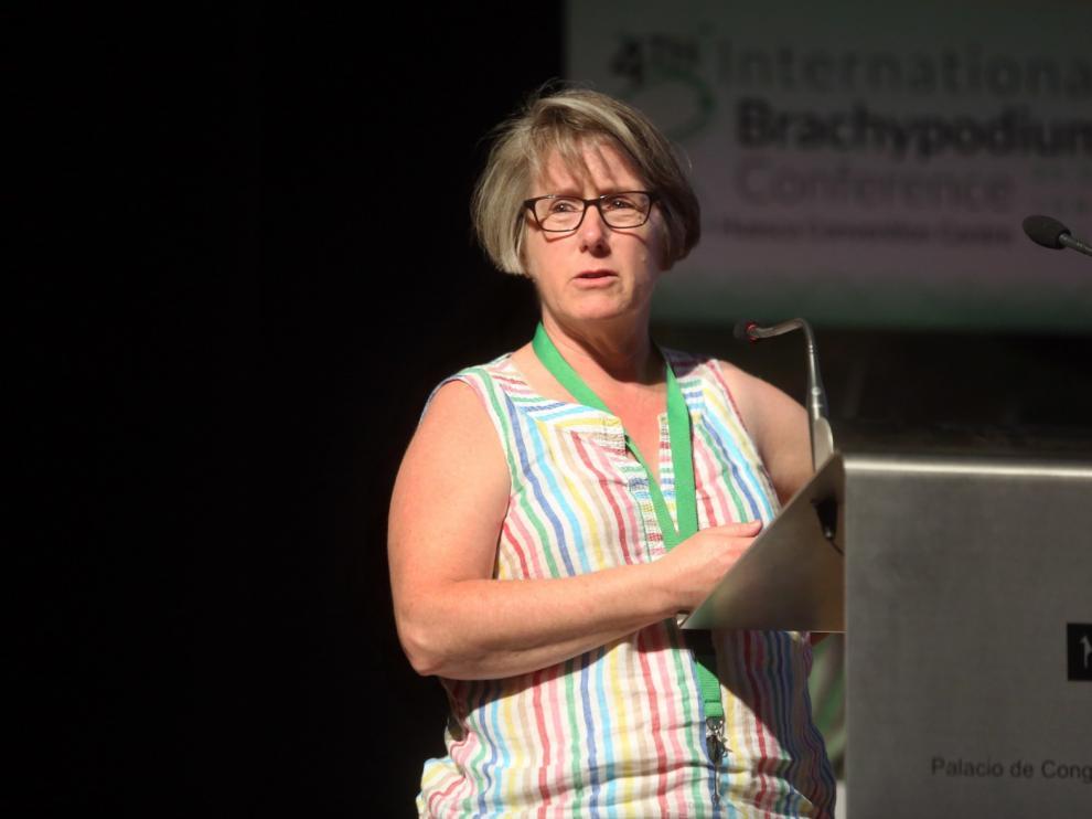 """Robin Buell, de la universidad de Michigan: """"El Brachypodium ofrece posibilidades a la investigación"""""""