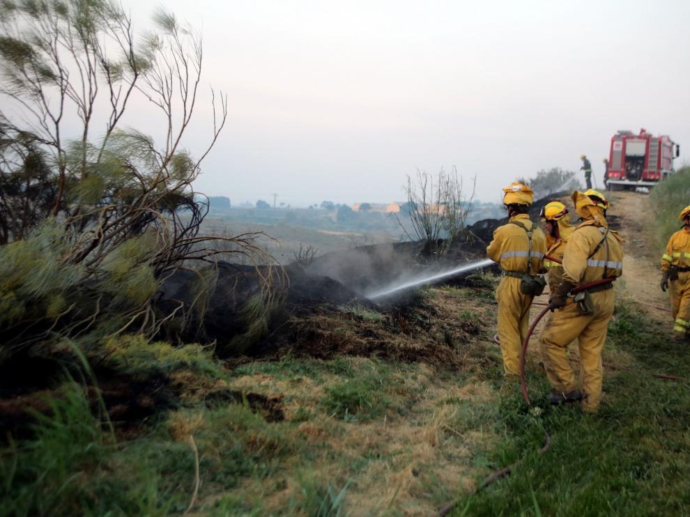 Llamamiento a la prevención ante el elevado riesgo de incendios forestales en Aragón