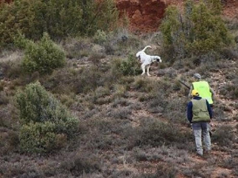 Muere el acompañante de un cazador de un disparo fortuito en Teruel