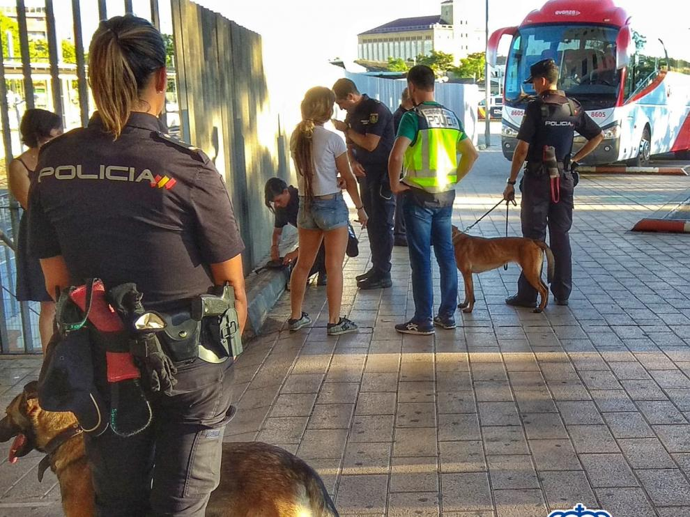 Dos personas detenidas por encubrimiento al autor de la agresión de las fiestas de San Lorenzo