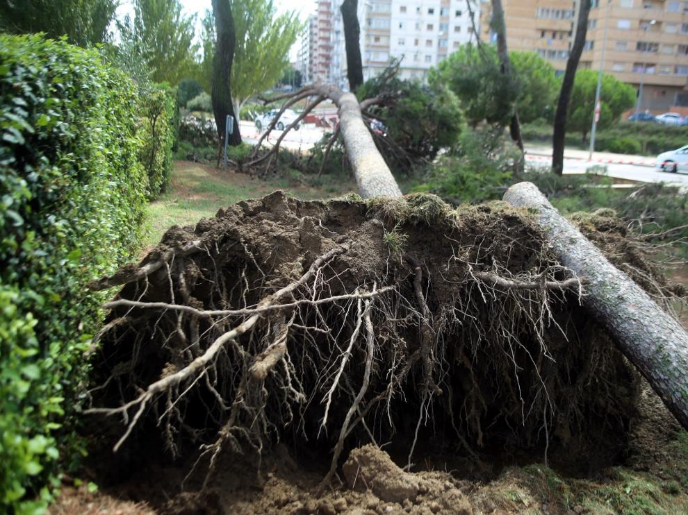 Récord de precipitaciones en agosto en Huesca con más de 76 litros por metro cuadrado