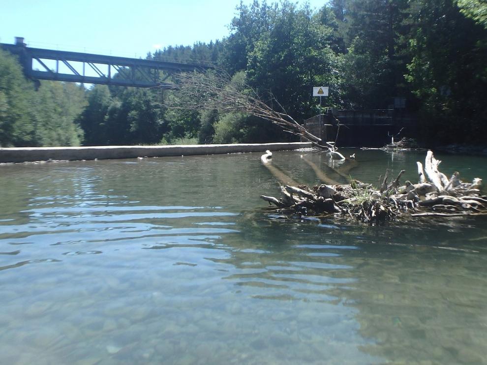 Limpieza en el río Aragón