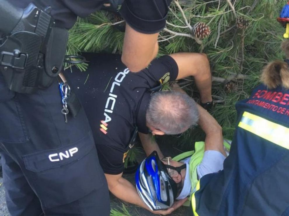 Un ciclista queda atrapado bajo las ramas al desplomarse un árbol a su paso por el Puente de San Miguel en Huesca