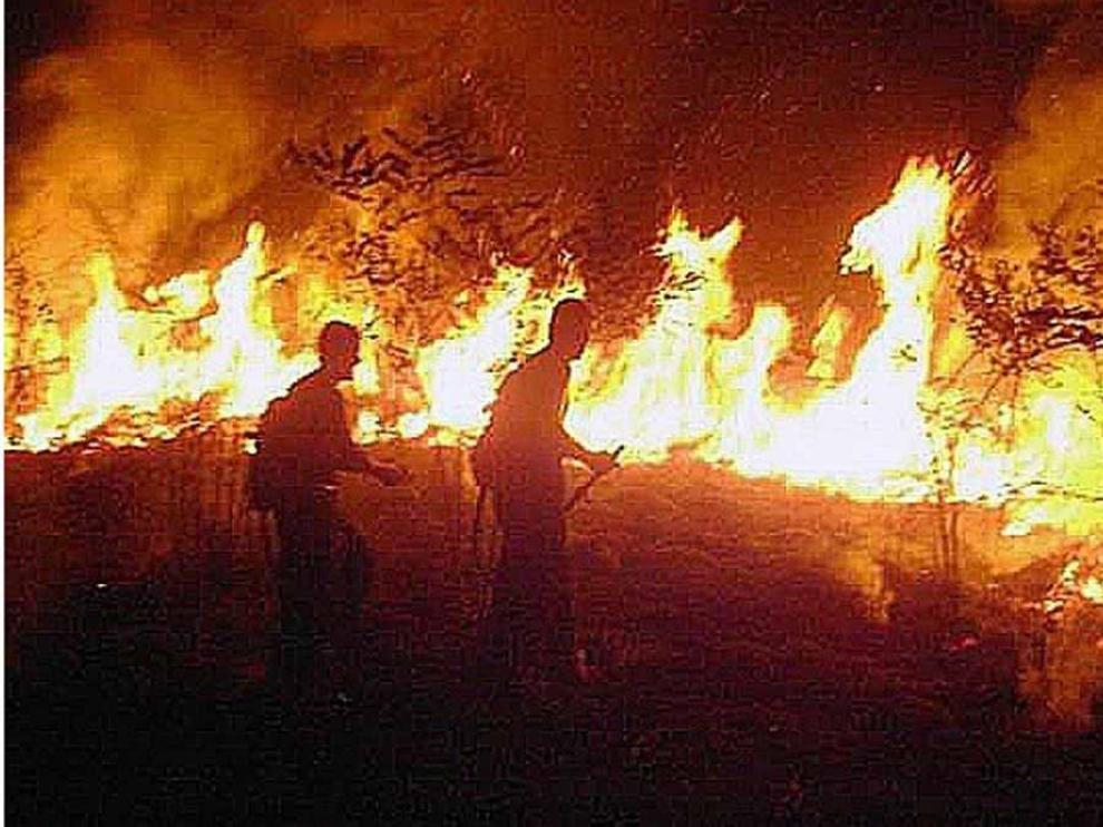 Bolsonaro prohíbe durante 60 días las quemas en todo Brasil para combatir los incendios en la Amazonia