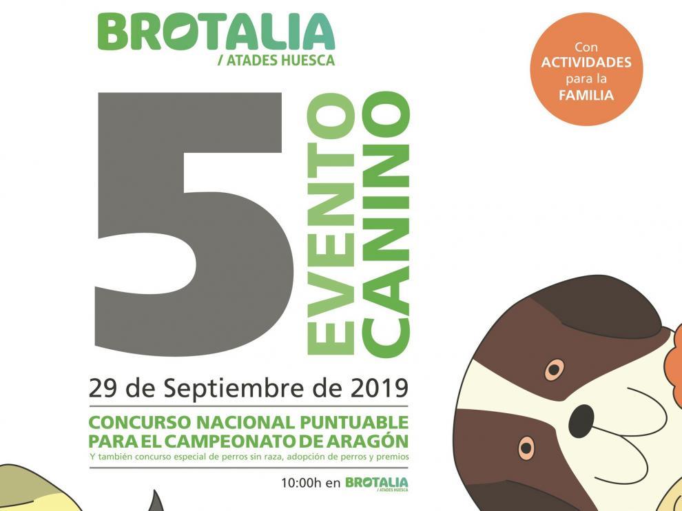 Fiesta de las mascotas en Huesca en el V Evento Canino de Brotalia