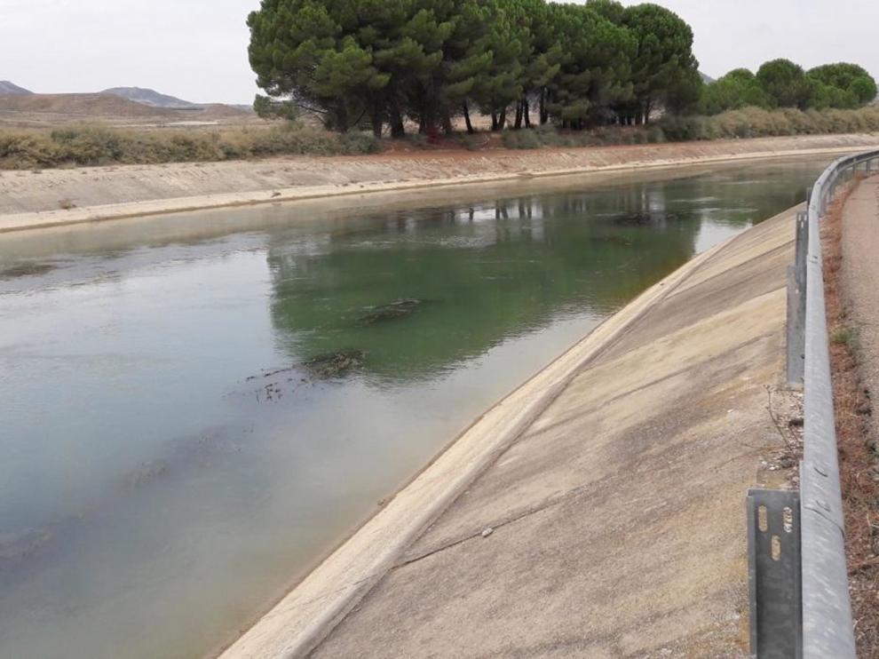 Adjudican un proyecto de mantenimiento en los Canales del Monegros y Sástago