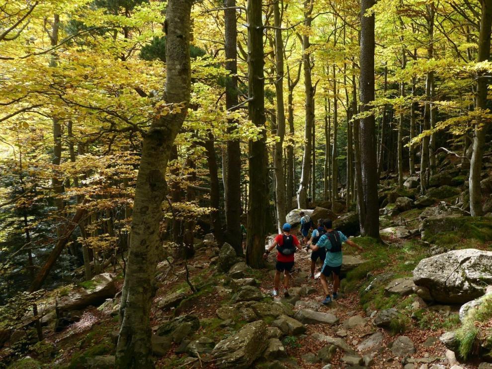 Disfrutando del otoño por el Parque Nacional de Ordesa