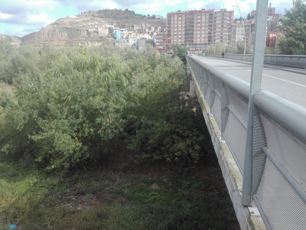CHA considera que la CHE debería llevar a cabo actuaciones de limpieza del río Cinca a su paso por Fraga