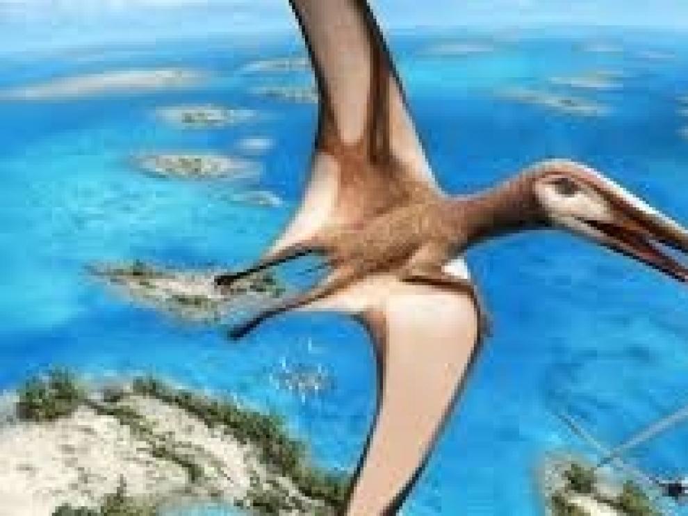 Un completo fósil revela una nueva clase de reptiles voladores
