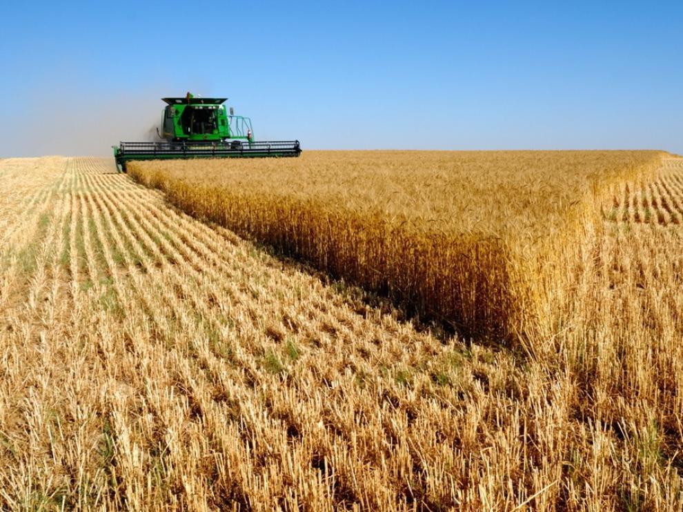 Agricultores y ganaderos perciben más de 7.400 millones de las ayudas PAC