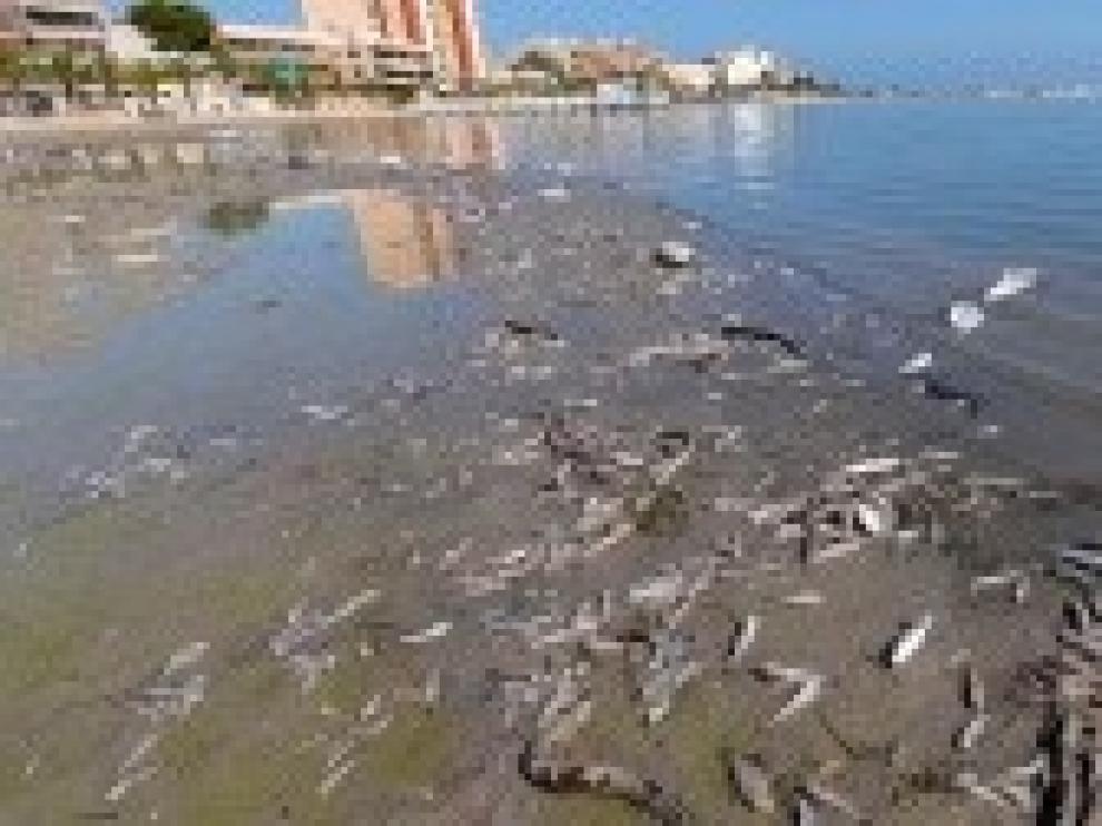 El Mediterráneo, en el centro de la diana de la crisis climática