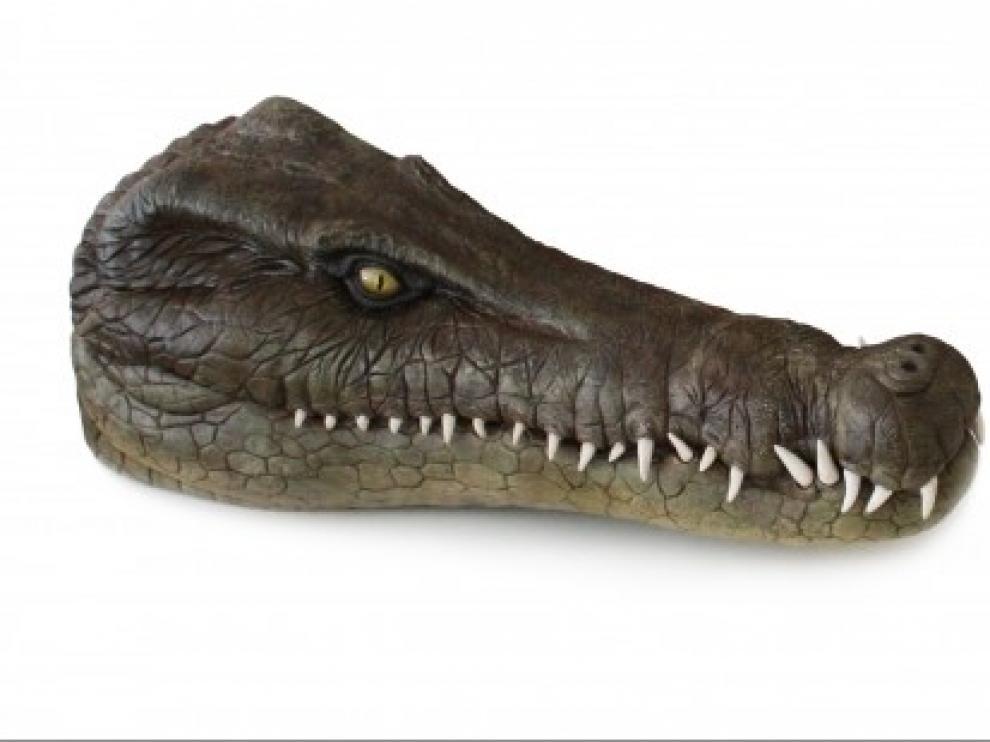 Describen un nuevo cocodrilo acuático que vivió hace 125 millones de años en Galve (Teruel)