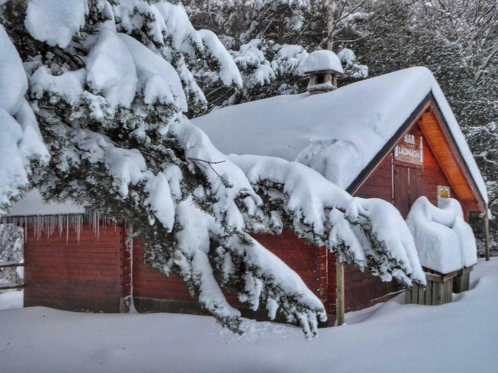 La belleza de Lacuniacha y de la nieve se funden con los animales