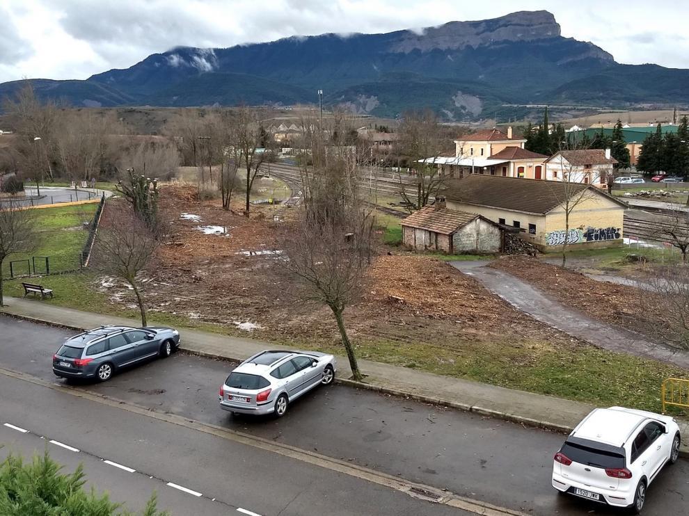 Quejas vecinales por la tala de un espacio verde en Jaca