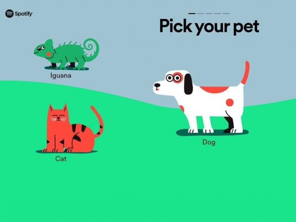 Los animales domésticos ya tienen su música favorita en Spotify