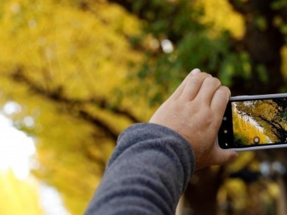 La educación ambiental afronta su Día Mundial en plena expansión digital