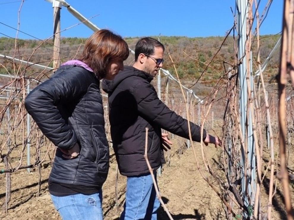 Bal Minuta se abre paso en el mercado del vino de altura