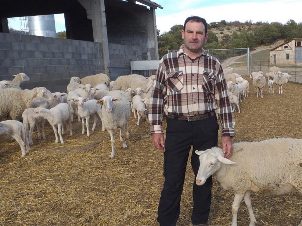 Productores de ovino urgen ayudas para el sector para afrontar la crisis generada por el coronavirus