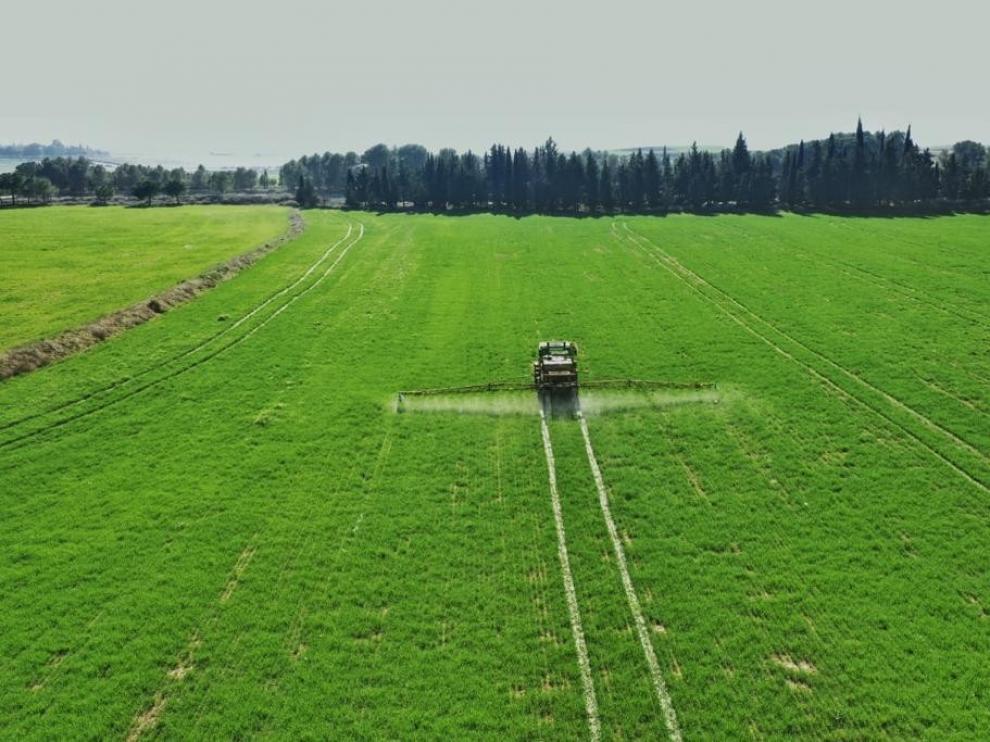 Asaja prevé que la cosecha de cereal en Huesca sea un 25 % superior a 2019