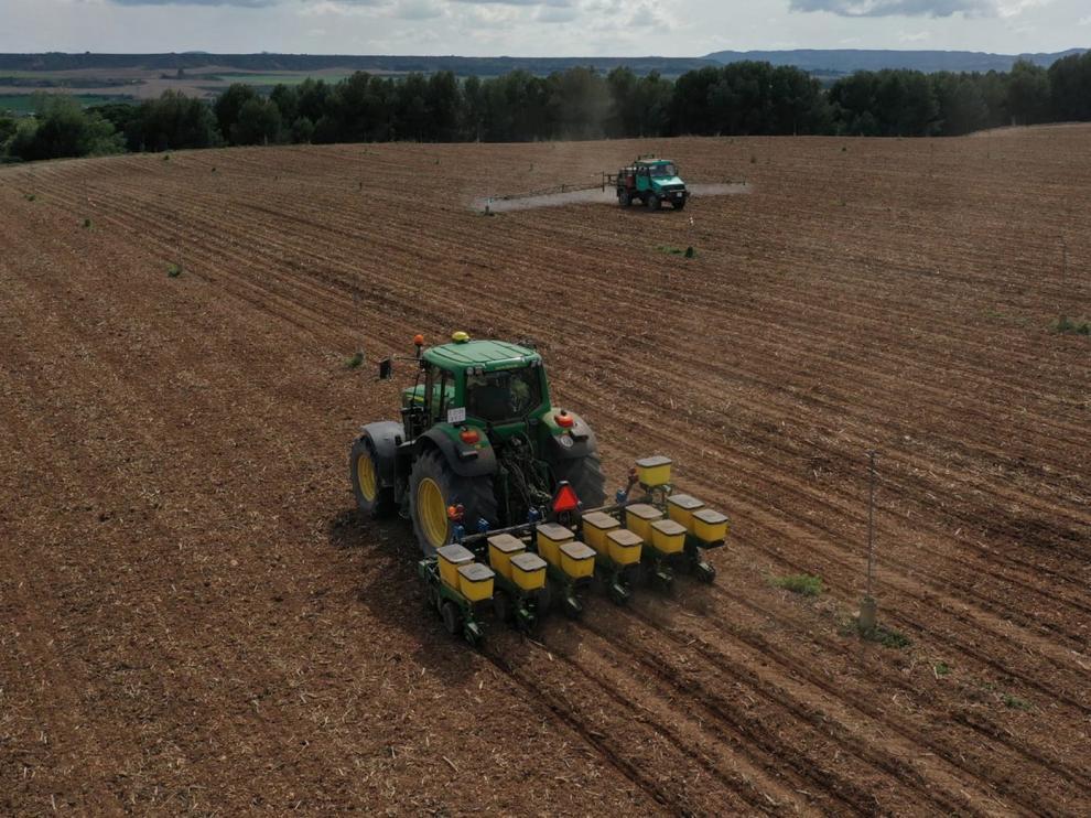 Empieza la siembra de maíz con garantías de agua esta campaña