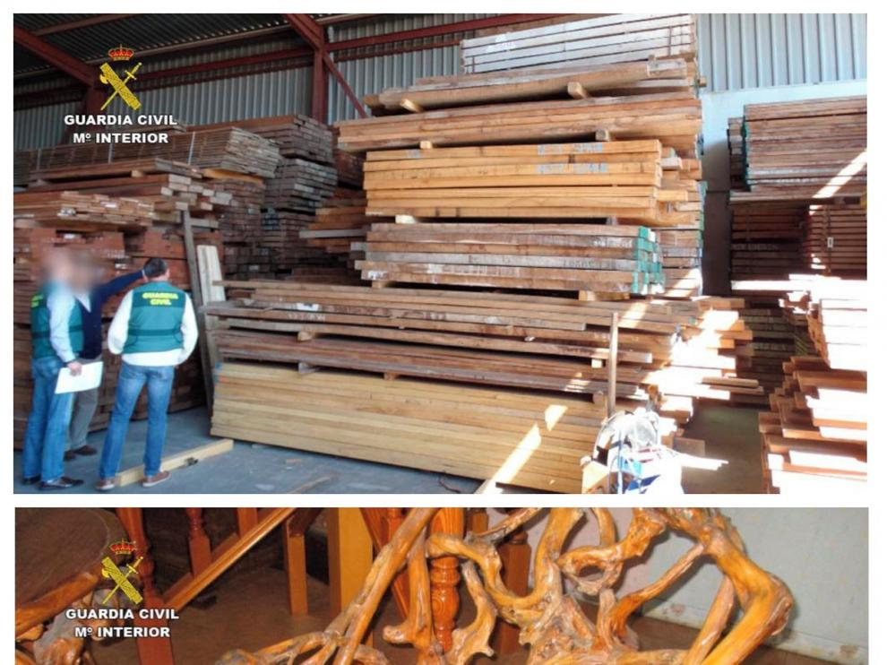 Persiguen el tráfico de madera que esquilma bosques del tercer mundo
