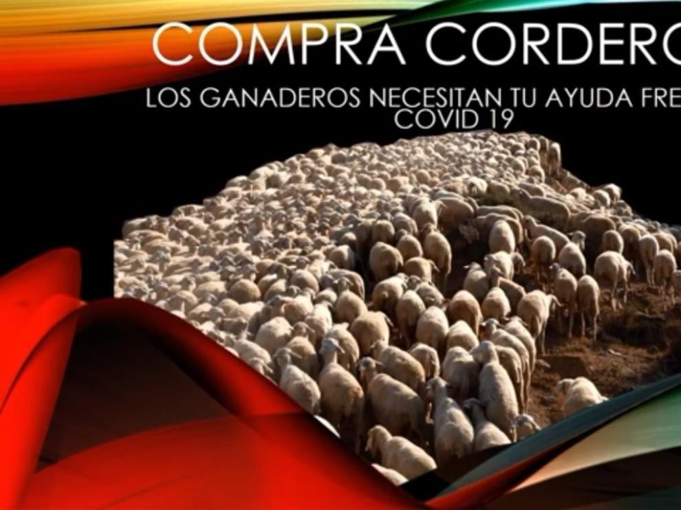 Teruel Existe lanza una campaña de promoción del consumo de cordero
