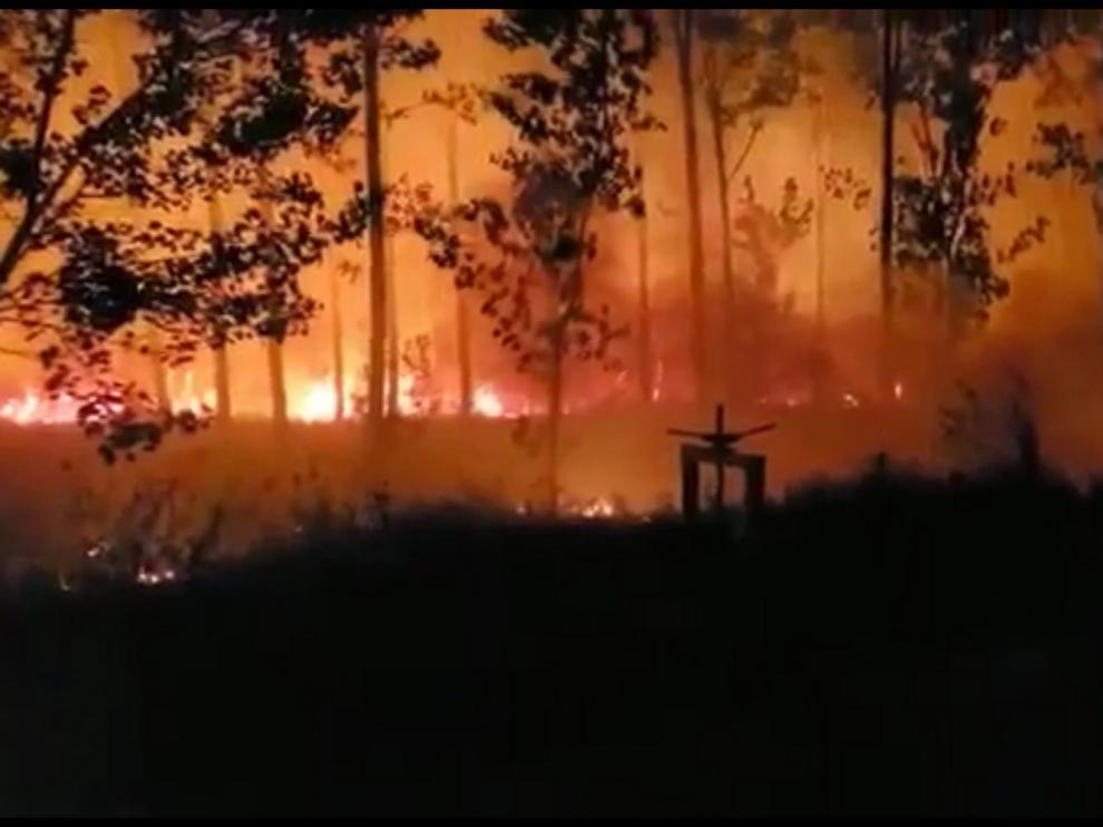 Espectacular incendio en una chopera en las inmediaciones de Monzón