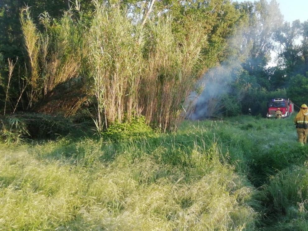 Un incendio quema la vegetación de parte de la ladera del Vero en Barbastro