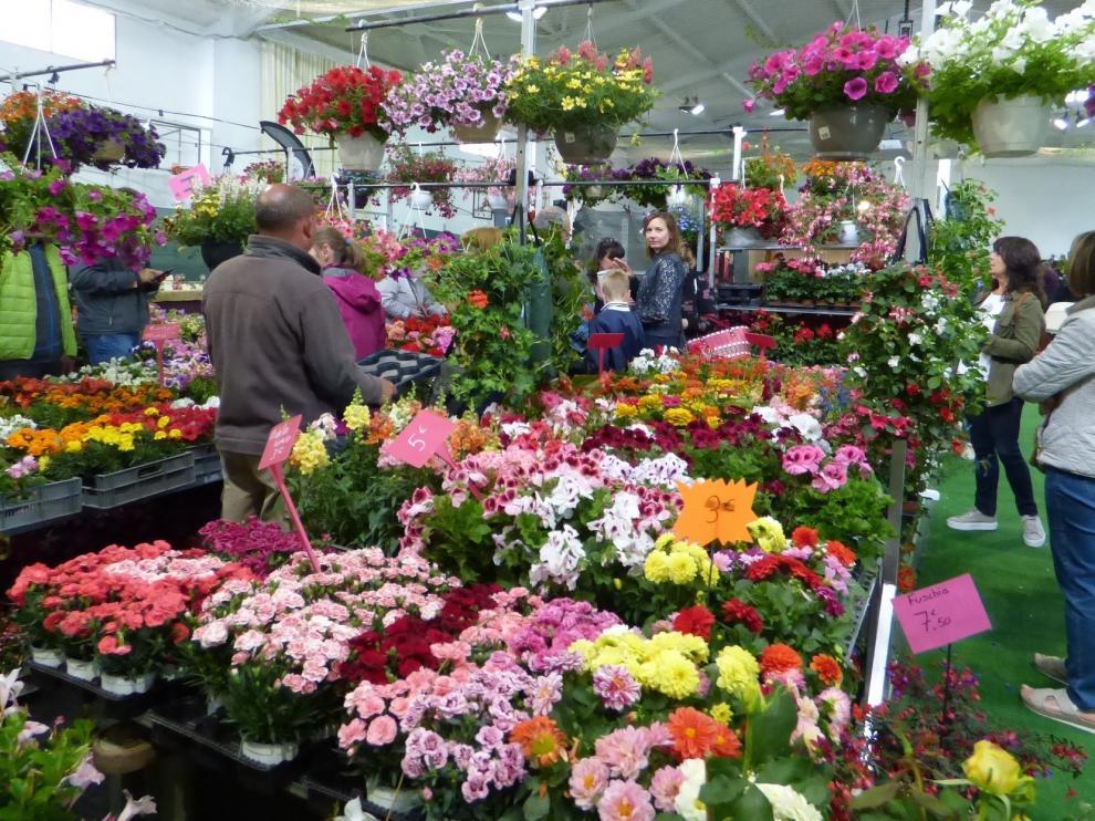 """Las flores """"toman"""" las ventanas y los balcones este fin de semana en Biescas"""