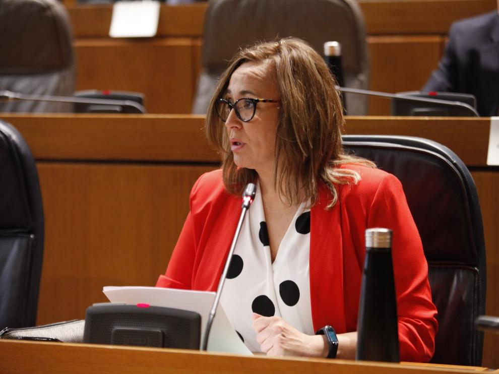 Mayte Pérez anuncia para 2021 un plan de protección ante enfermedades contagiosas en Aragón