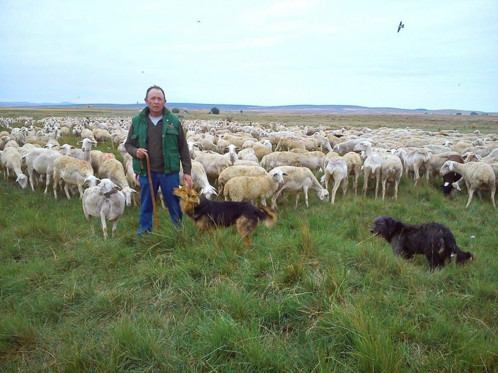 Un pastor aragonés, al otro lado del teléfono para vencer la soledad