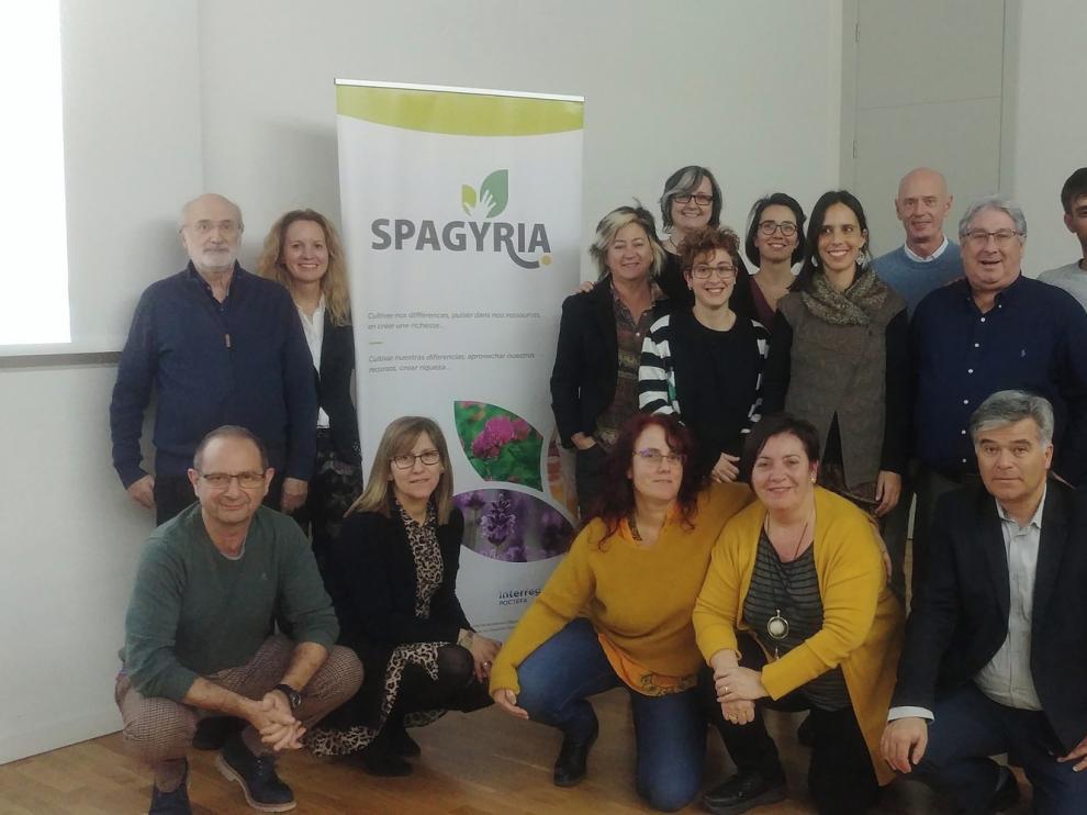 La novena reunión del Comité de gestión y Coordinación del Proyecto Spagyria se celebra a distancia