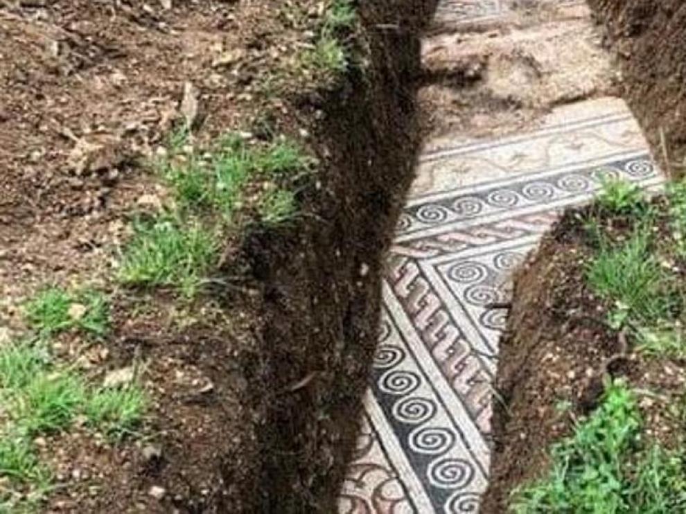 Sale a la luz un rico mosaico romano bajo unos viñedos en Italia