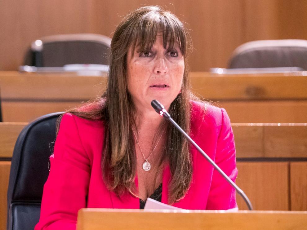 Repollés niega un déficit de infraestructuras sanitarias en Aragón